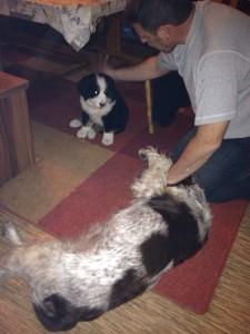 15.11.2014 Enrico in seinem neuen zu Hause  (4)
