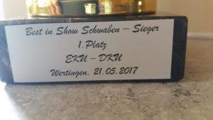 21 05 2017 Ausstellung Wertingen Donner erster Platz in Best in Show (3)