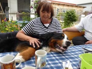 26.07.2014 Angelika, Bernd und Dolly zu Besuch (5)