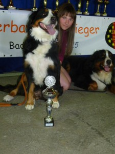 26.07.2015 Ausstellung Oberbayern-Sieger in Bafd-Aibling (26)